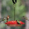 Aspects HummZinger Ultra Hummingbird Feeder (367)