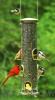 Aspects Quick Clean Big Tube Antique Brass Bird Feeder (420)