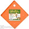 Bloem Ups-A-Daisy Square Planter Insert 14
