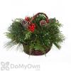 BL Fraser Basket Decorated 8