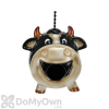 Coynes Company Cow Bird House (D2572)
