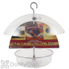 Droll Yankees American Bird Dome Bird Feeder (ABDF10)