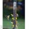 Droll Yankees 8 Ports Metal Thistle Bird Feeder Green (CJTHM23G)