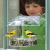Droll Yankees Window Bird Feeder (W1)