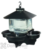 First Nature Clear Lantern Bird Bath and Waterer (3039)