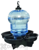 First Nature Bird Bath and Waterer (3004)
