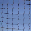 Bird Barrier 3 / 4 in. Black StealthNet Heavy Duty 50' x 50' Bird Net (n1x - b220)