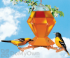 Perky Pet Hex Oriole with Bee Guards Bird Feeder 36 oz. (252)