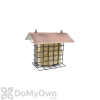 PineBush Metal Suet Bird Feeder with Brushed Cooper Roof (07507)