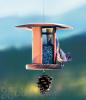 Schrodt Nyger Songbird Lantern Feeder 7 in. (PBBSSBNL)