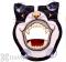 Songbird Essentials Black & White Cat Face Window Bird Feeder (SE3870201)