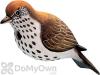 Songbird Essentials Hermit Thrush Bird House (SE3880063)
