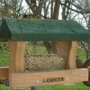 Songbird Essentials Little Looker Bird Feeder (SE514)
