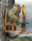 Songbird Essentials Recycled Poly Table and Chair Squirrel Feeder (SE526)