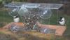 Songbird Essentials Window Bird Feeder 8 (SE538)