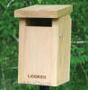 Songbird Essentials Bluebird House with Slot Entrance (SE544)