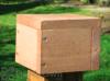 Songbird Essentials Post Mount Cap For Bird Feeders (SE552)