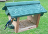 Songbird Essentials Bluebird Feeder (SE557)