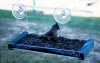 Songbird Essentials Window Greenhouse Bird Feeder (SE563)