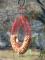 Songbird Essentials Red Wreath Ring Whole Peanut Bird Feeder (SE6020)