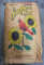 Songbird Essentials Sunflower Bird Seed 40 lb. (SEEDBO40)
