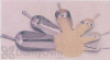 Songbird Essentials Aluminum Scoop 38 oz. (SEFITFILL30212)