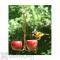 Songbird Essentials Double Fruit Bird Feeder (SEHHDBAP)