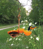 Songbird Essentials Copper Single Cup Oriole Fruit and Jelly Feeder (SEHHORFJ)