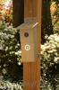 Songbird Essentials Driftwood Nesting Box (SERUBBB100D)