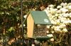 Songbird Essentials Hunter Driftwood Hopper Bird Feeder 4 qt. (SERUBHF500HD)