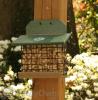 Songbird Essentials Hunter Driftwood Squirrel Feeder (SERUBSQF100HD)