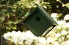 Songbird Essentials Hunter Ivory Recycled Plastic Wren Bird House (SERUBWH105)