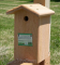 Songbird Essentials Downey Woodpecker House (SESC1033C)