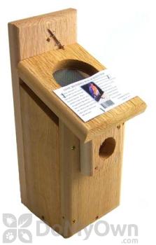 Songbird Essentials Screen Top Western Bluebird Box Bird House (SEWBBSC1009C)