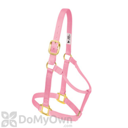 Weaver Leather Original Non - Adjustable Halter 1 in. for Yearling Horse - Pink