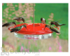 Woodlink Audubon Classic Hummingbird Feeder 16 oz. (NAH1)