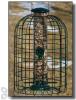Woodlink Audubon Squirrel - Resistant Caged Seed Tube Bird Feeder 1.25 lbs. (WLNATUBE3)